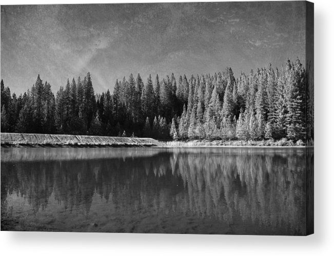 White Pines Lake Community Park Acrylic Print featuring the photograph Those Days Are Gone by Laurie Search