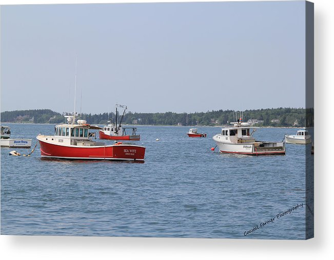 Boats Acrylic Print featuring the photograph Three Red Boats by Becca Brann