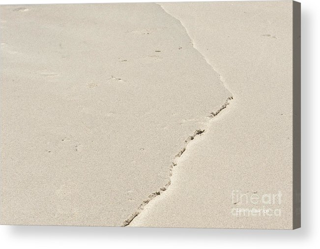 Point Lobos Acrylic Print featuring the photograph Torn Sand by Artist and Photographer Laura Wrede