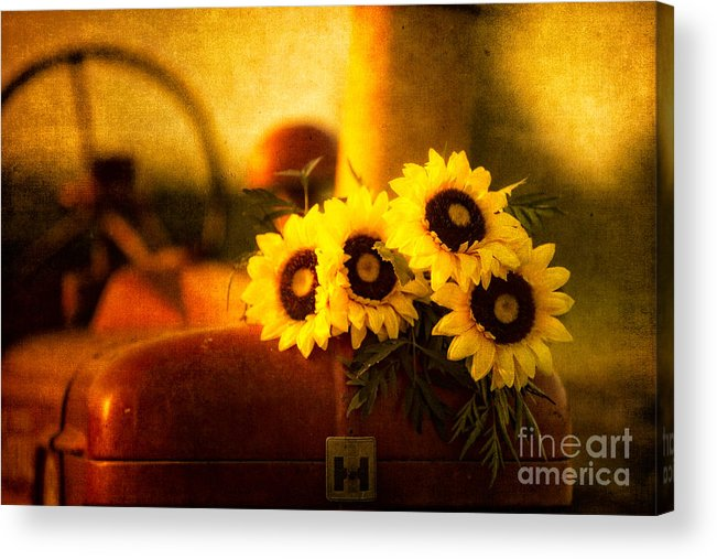 Tractor Acrylic Print featuring the photograph Tractors And Sunflowers by Todd Bielby