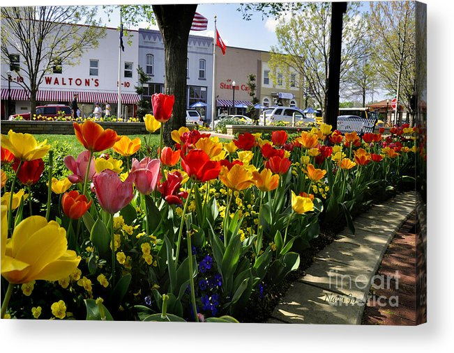 Bentonville Acrylic Print featuring the photograph Tulips In The Spring by Nava Thompson