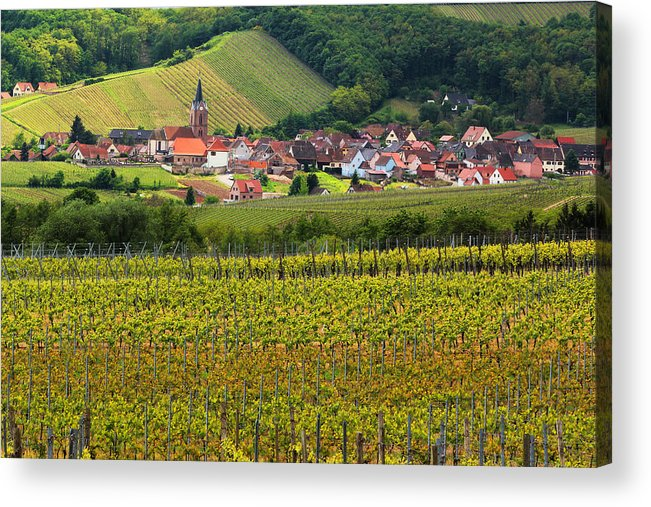 Vineyards Acrylic Print featuring the photograph View Of Rodern From The Vineyards Of Alsace by Greg Matchick