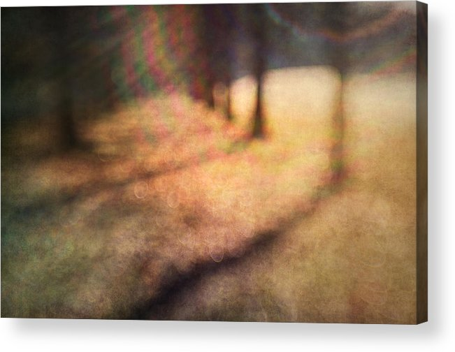 Blur Acrylic Print featuring the photograph Warner Park Sunrise by David Morel