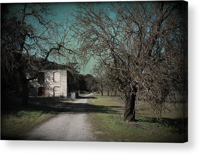 Sycamore Grove Park Acrylic Print featuring the photograph Way Back When by Laurie Search
