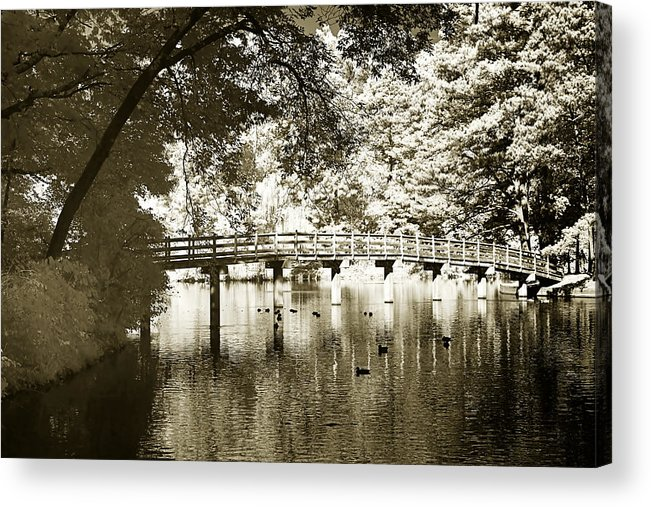 Photo Acrylic Print featuring the photograph Westhamption Lake -2 by Alan Hausenflock