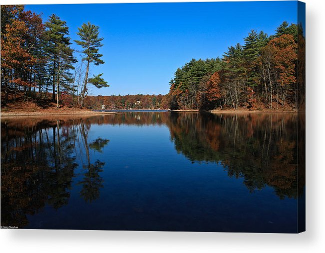 Pond Acrylic Print featuring the photograph Whites Pond by Corey Sheehan