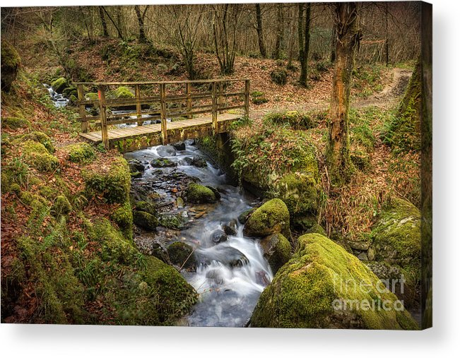 Autumnal Acrylic Print featuring the photograph Winter Footbridge by Adrian Evans