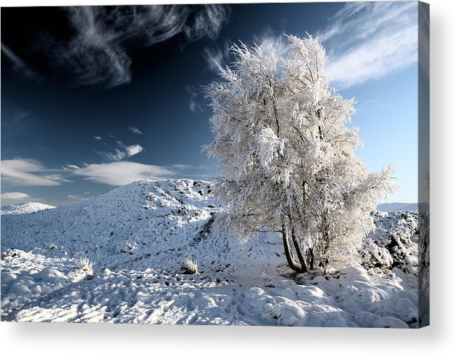 Snow Scene Acrylic Print featuring the photograph Winter Landscape by Grant Glendinning