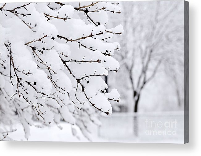 Winter Acrylic Print featuring the photograph Winter Park Under Heavy Snow by Elena Elisseeva
