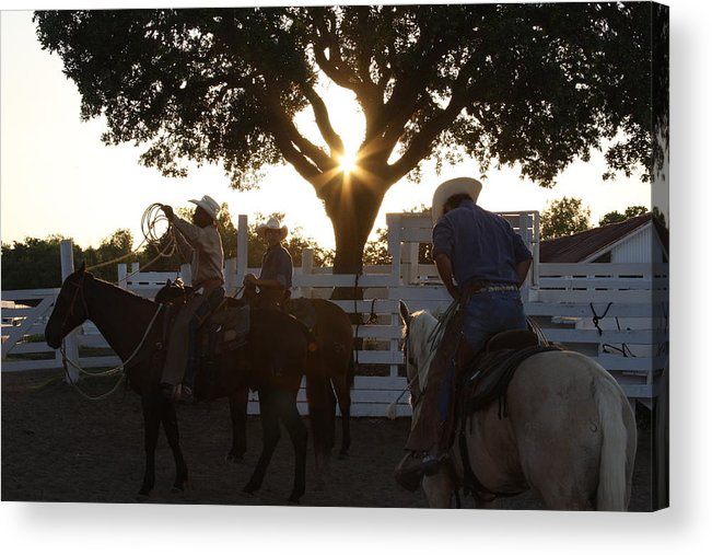 George Ranch Acrylic Print featuring the photograph Working Cowboys by Matt Johnson