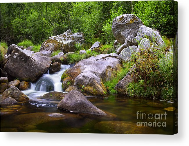 Autumn Acrylic Print featuring the photograph Creek by Carlos Caetano
