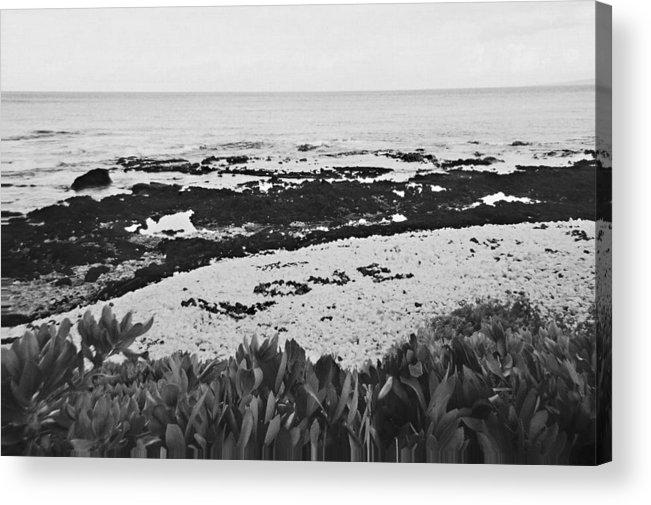 Beach Acrylic Print featuring the photograph Love On The Beach by Brandon Radford