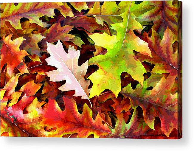 Autumn Acrylic Print featuring the photograph Simple Background From Autumn Leaves by Aleksandr Volkov