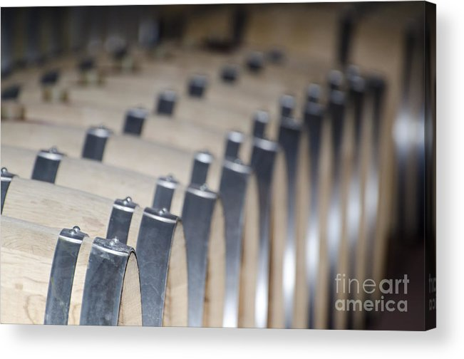 Wine Barrel Acrylic Print featuring the photograph Wine Barrels In Line by Mats Silvan