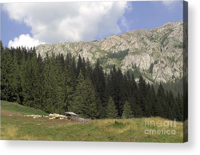 Alp Acrylic Print featuring the photograph Landscape by Odon Czintos