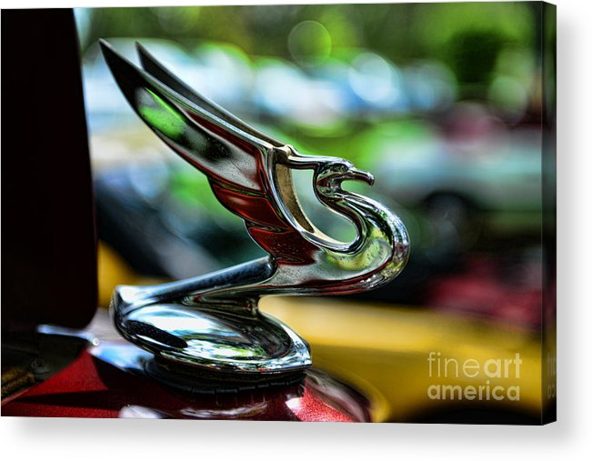 1934 Chevrolet Flying Eagle Hood Ornament Acrylic Print featuring the photograph 1934 Chevrolet Flying Eagle Hood Ornament - 2 by Paul Ward