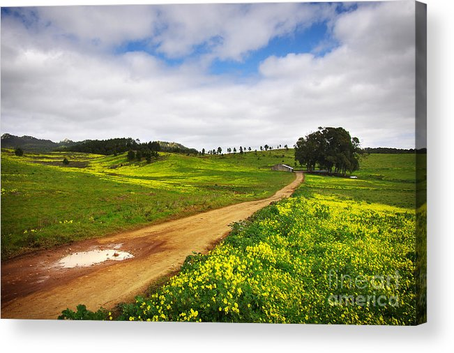Autumn Acrylic Print featuring the photograph Countryside Landscape by Carlos Caetano