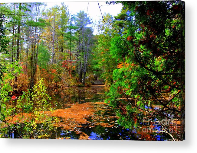 Fall Acrylic Print featuring the photograph Untitled by Lennie Malvone