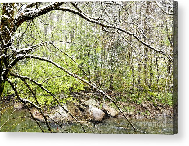 Williams River Acrylic Print featuring the photograph Spring Snow Along Williams River by Thomas R Fletcher
