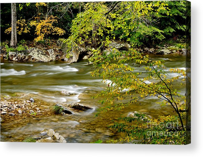 West Virginia Acrylic Print featuring the photograph Fall Along Williams River by Thomas R Fletcher