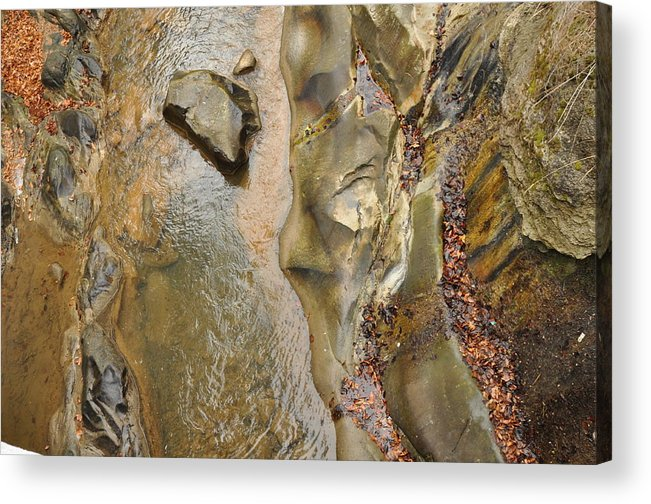 Abstract Acrylic Print featuring the photograph Abstract by Alexa Alexandru-Michael