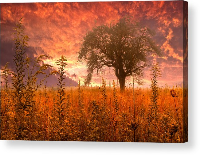 Andrews Acrylic Print featuring the photograph Aflame by Debra and Dave Vanderlaan