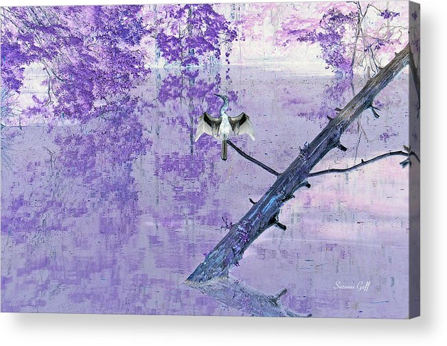 Anhinga Acrylic Print featuring the photograph Anhinga Japanese Style by Suzanne Gaff