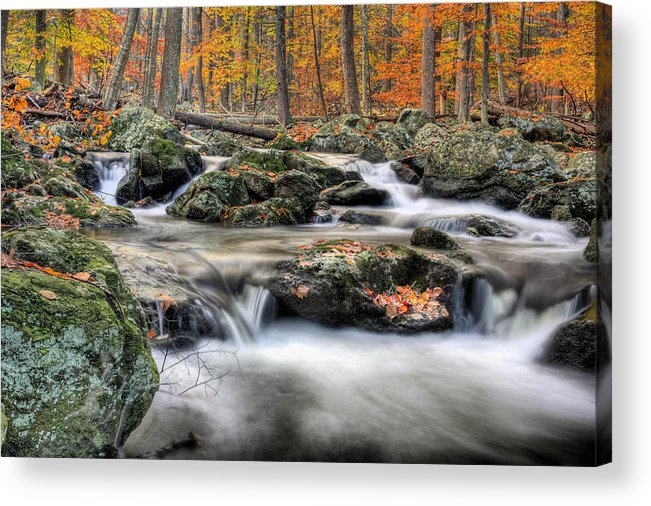 Cunningham Falls Acrylic Print featuring the photograph Autumn Dreams by JC Findley