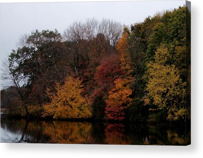 Autumn Acrylic Print featuring the photograph Autumn On The River by Barry Doherty