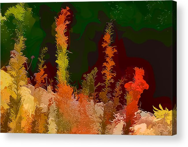 Artistic Photography Acrylic Print featuring the photograph Autumn Pastel by Tom Prendergast