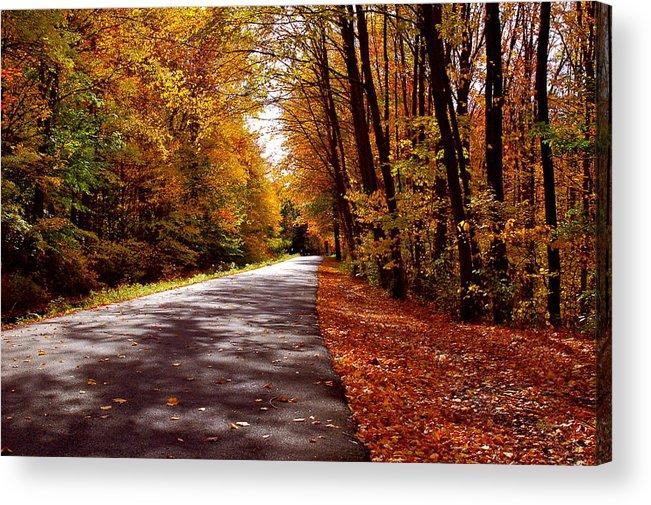 Road Acrylic Print featuring the photograph Autumn Walk by Christine Tobolski