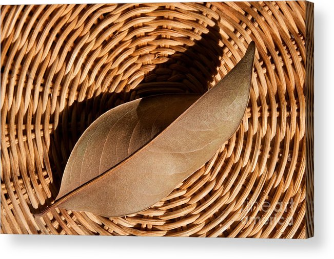 Brown Acrylic Print featuring the photograph Basket Of Brown by Dan Holm