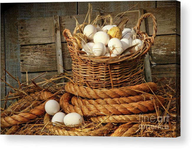 Agriculture Acrylic Print featuring the photograph Basket Of Eggs On Straw by Sandra Cunningham
