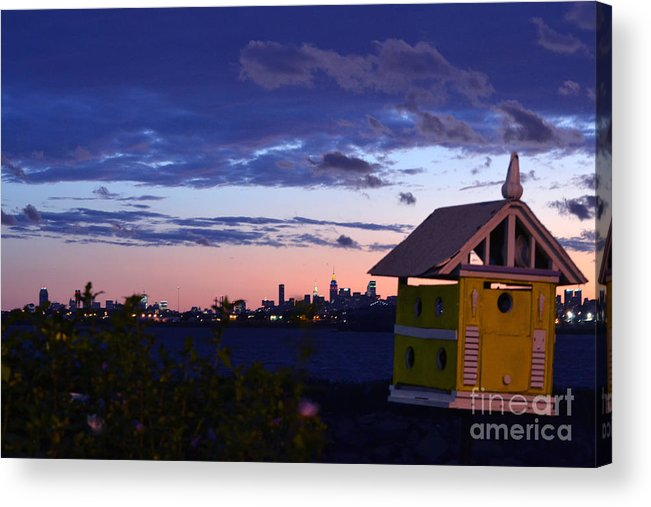 Bird House Acrylic Print featuring the photograph Birds View From Penthouse by Bella Photography