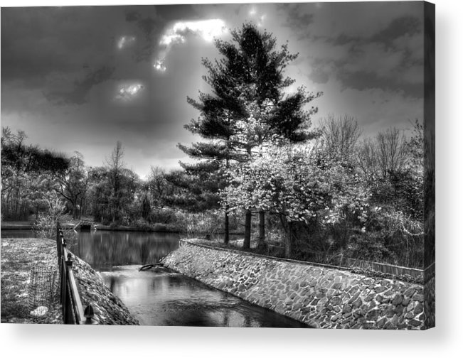 Tree Acrylic Print featuring the photograph Black And Wwhite Lake by Dennis Clark