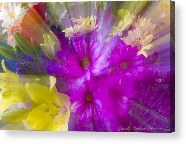 Flower Acrylic Print featuring the photograph Bloom Zoom by Charles Warren