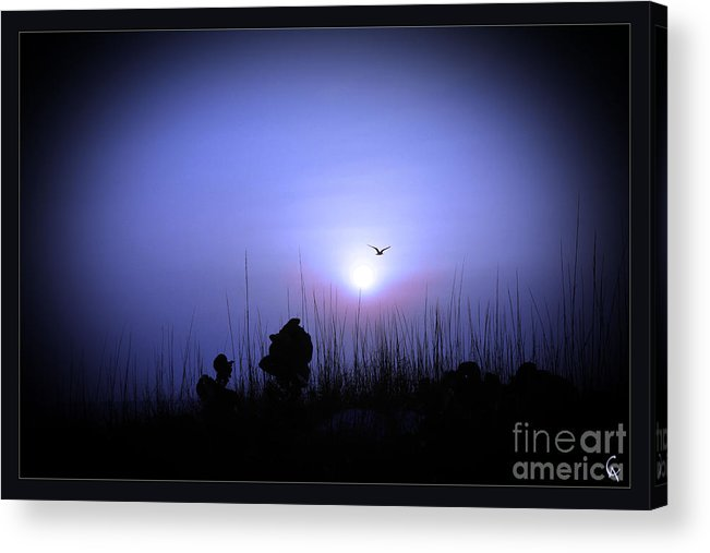 Beach Acrylic Print featuring the photograph Blue Sunset by AlanaCrystina Page