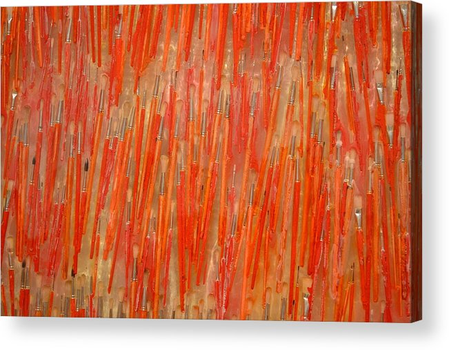 Red Acrylic Print featuring the photograph Brush View by Bella Photography