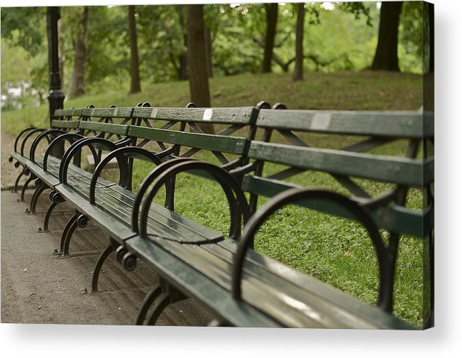 Central Park Bench Acrylic Print By William Carson Jr