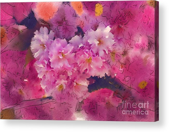 Cherry Blossoms Acrylic Print featuring the photograph Cherry Blossom Time by Marion Headrick