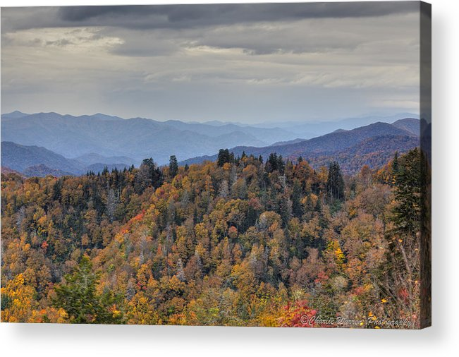 Clingmans Dome Acrylic Print featuring the photograph Clingman's Dome IIi by Charles Warren