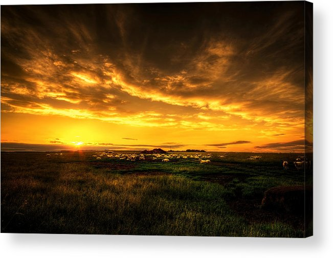 Blue Acrylic Print featuring the photograph Countryside Sunset by Svetlana Sewell