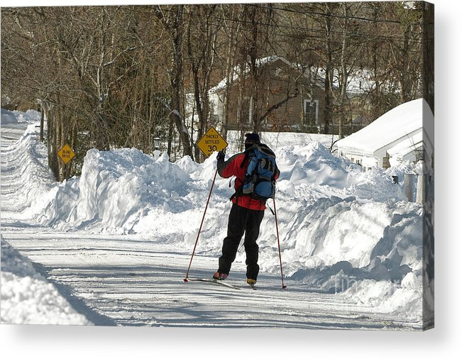 Winter Acrylic Print featuring the photograph Cross Country Skier On Cape Cod by Matt Suess