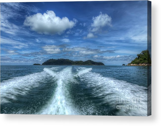 Tropical Acrylic Print featuring the photograph Cruising by Adrian Evans