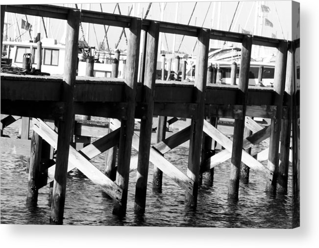Palmetto Acrylic Print featuring the photograph Down By The Marina by Nicholas Evans