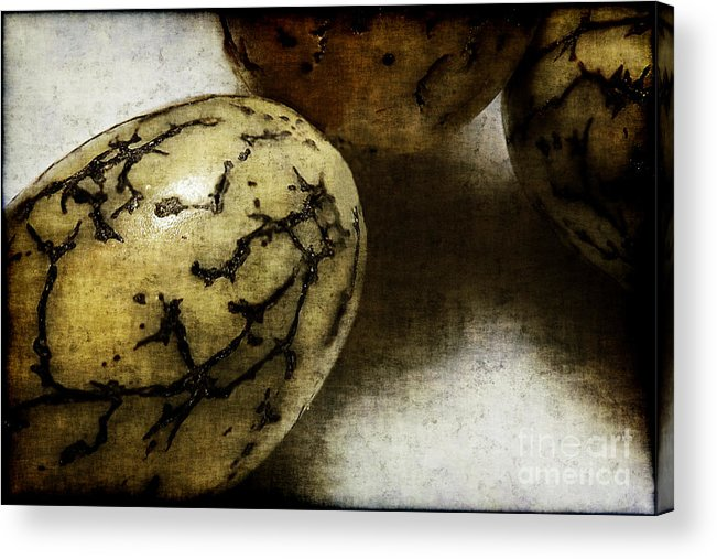 Dragon Acrylic Print featuring the photograph Dragon Eggs by Judi Bagwell