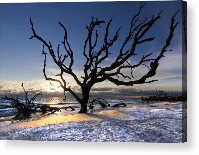 Clouds Acrylic Print featuring the photograph Driftwood Beach At Dawn by Debra and Dave Vanderlaan