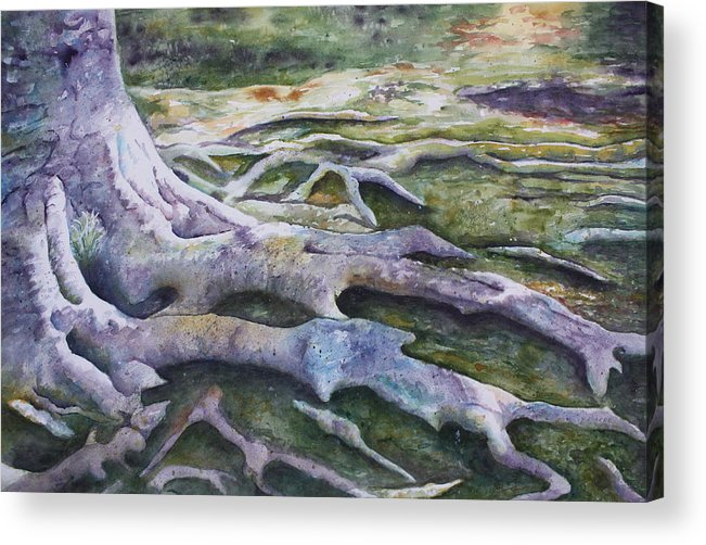 Tree Roots Acrylic Print featuring the painting Dunbar Cave Roots by Patsy Sharpe
