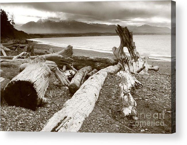 Landscape Acrylic Print featuring the photograph Dungeness Washington by Angela Q