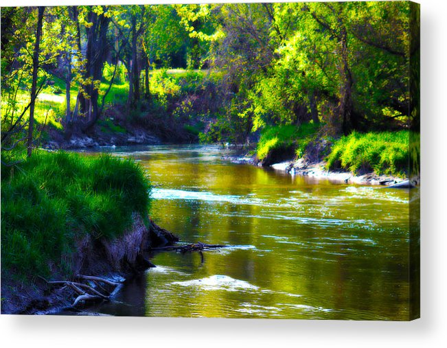 Enchanted Acrylic Print featuring the photograph Enchanted River by Rebecca Frank